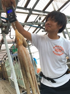 image-60fed.jpeg